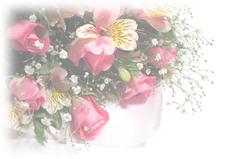 Flower_500_1